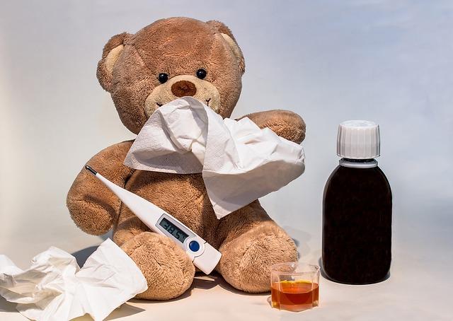 medvídek s chřipkou